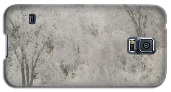 Icy Trees Galaxy S5 Case