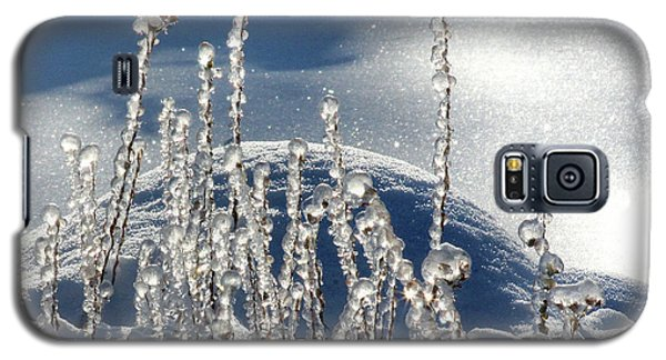 Galaxy S5 Case featuring the photograph Icy World by Doris Potter