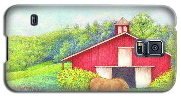 Idyllic Summer Landscape Barn With Horse Galaxy S5 Case by Judith Cheng