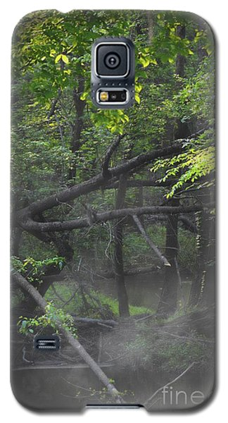 Galaxy S5 Case featuring the photograph If A Tree Falls In The Woods by Skip Willits