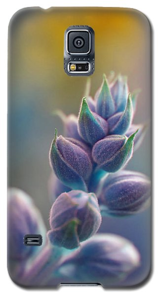 If Galaxy S5 Case by Adria Trail