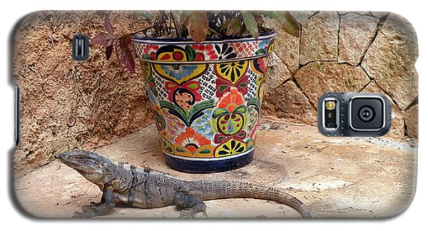 Galaxy S5 Case featuring the photograph Iguana by Dianne Levy