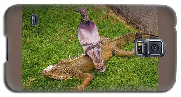 Iguana With Pigeon On Its Back Galaxy S5 Case