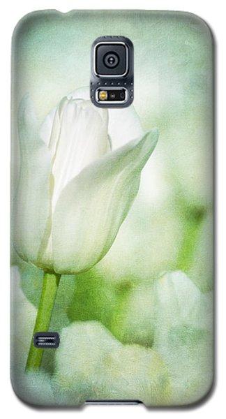 Illuminate Galaxy S5 Case