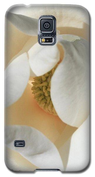 Illuminated Magnolia Macro Galaxy S5 Case