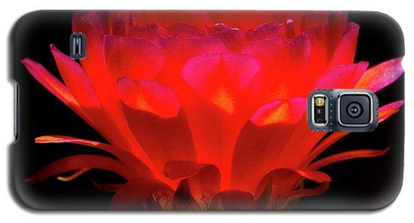 Illumination Galaxy S5 Case