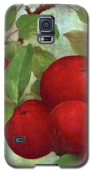Illustrated Apples Galaxy S5 Case