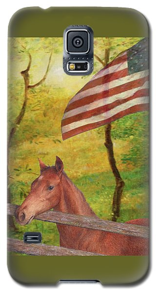 Illustrated Horse In Golden Meadow Galaxy S5 Case