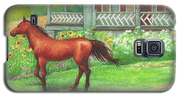 Illustrated Horse Summer Garden Galaxy S5 Case