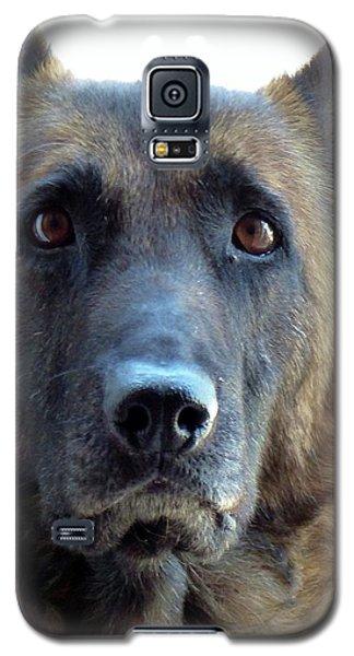 I'm A Beauty Galaxy S5 Case
