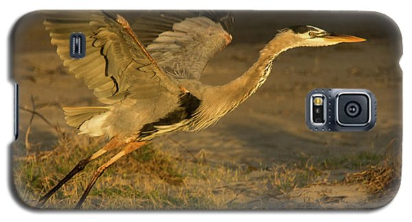 I'm Out Of Here Wildlife Art By Kaylyn Franks Galaxy S5 Case