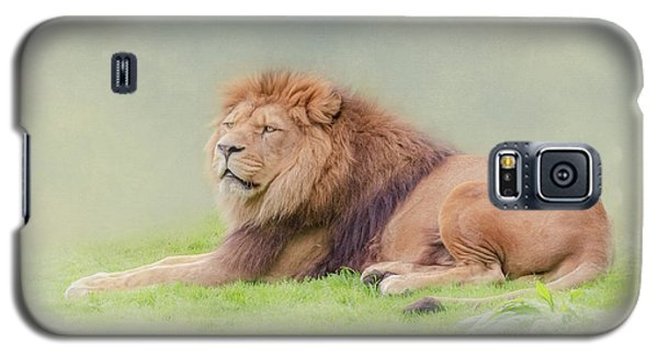 Galaxy S5 Case featuring the photograph I'm The King by Roy McPeak