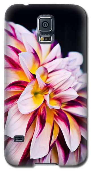 Impression D'un Dahlia Galaxy S5 Case