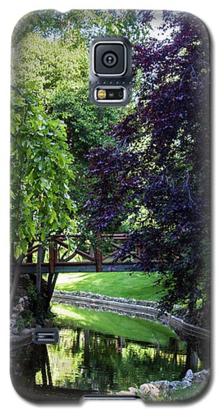 Impressionist Reminiscence  Galaxy S5 Case