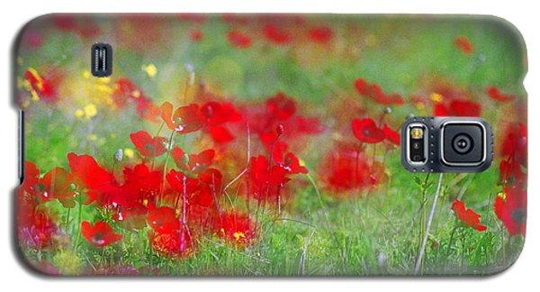 Impressionistic Blossom Near Shderot Galaxy S5 Case