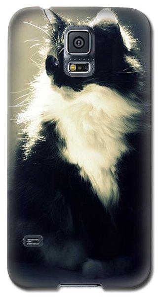In A Daze Galaxy S5 Case