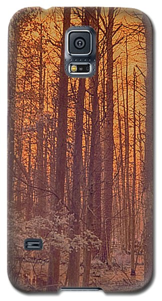 Home Of The Jersey Devil Galaxy S5 Case