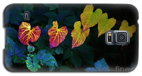 In Autumn's Light Galaxy S5 Case
