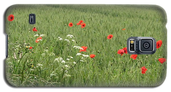 in Flanders Fields the  poppies blow Galaxy S5 Case