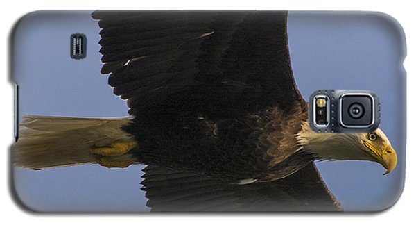Galaxy S5 Case featuring the photograph In Flight by Gary Lengyel