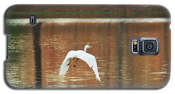 Galaxy S5 Case featuring the photograph In Flight by Kim Henderson
