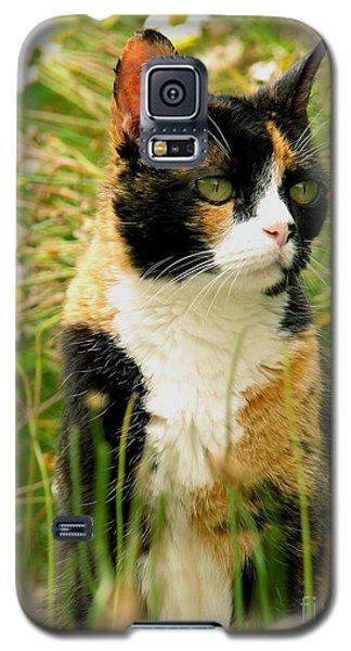 In Her Element Galaxy S5 Case