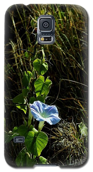 Galaxy S5 Case featuring the photograph In Praise Of Morning Light by Craig Wood