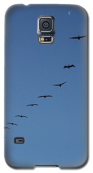 In Rhythm Galaxy S5 Case