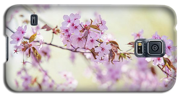 Galaxy S5 Case featuring the photograph In Tender Bloom. Spring Watercolors by Jenny Rainbow