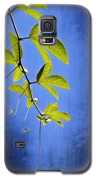 In The Blue Galaxy S5 Case by Carolyn Marshall