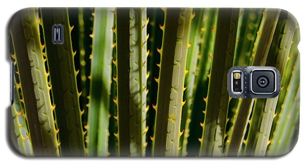 In The Cactaceae Weeds Galaxy S5 Case