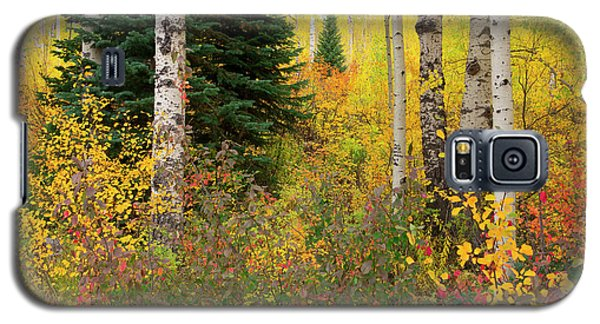 Galaxy S5 Case featuring the photograph In The Depths Of Autumn Woods by Tim Reaves