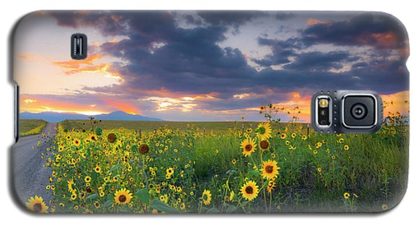 Galaxy S5 Case featuring the photograph In The Evening Light by Tim Reaves