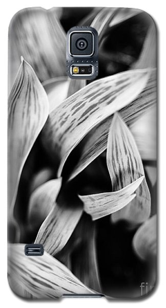 In The Garden _ Tulip Leaves Galaxy S5 Case