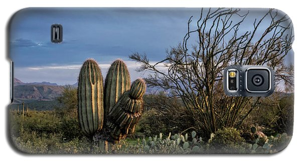 Galaxy S5 Case featuring the photograph In The Green Desert  by Saija Lehtonen
