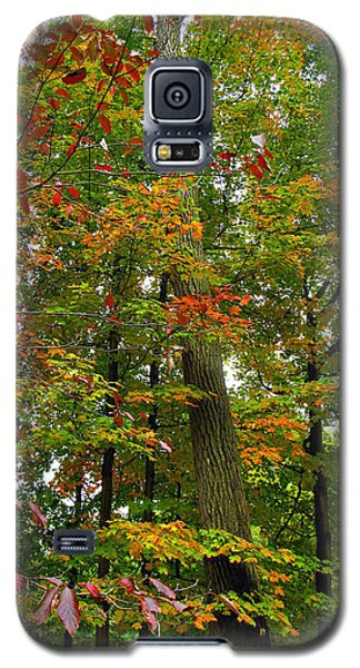 Galaxy S5 Case featuring the photograph In The Height Of Autumn by Joan  Minchak