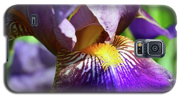 In The Purple Iris Galaxy S5 Case by Lyle Crump