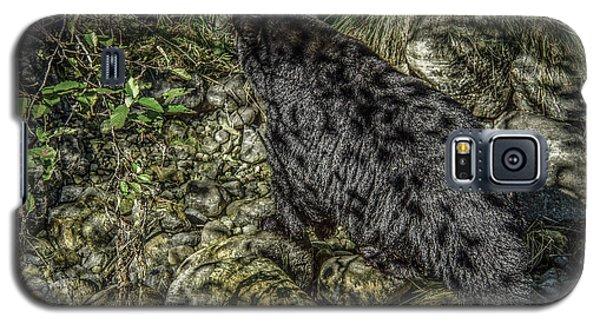 In The Shadows Black Bear Galaxy S5 Case