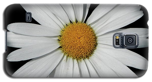In The Spotlight White Daisy Galaxy S5 Case