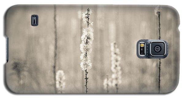 In The Wild Grass Galaxy S5 Case