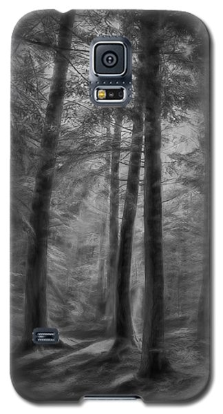 In The Woods Galaxy S5 Case