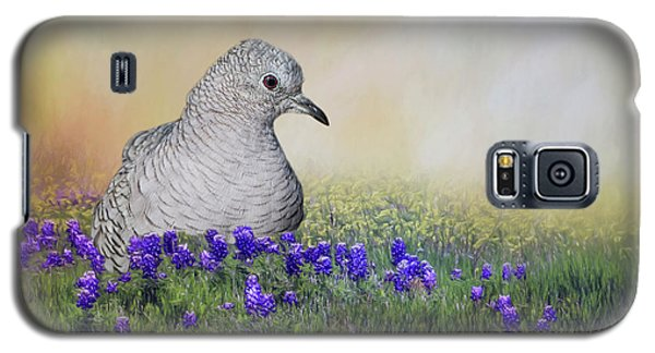 Galaxy S5 Case featuring the photograph Inca Dove  by Bonnie Barry