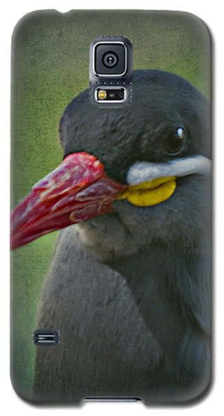 Inca Tern _ 1a Galaxy S5 Case