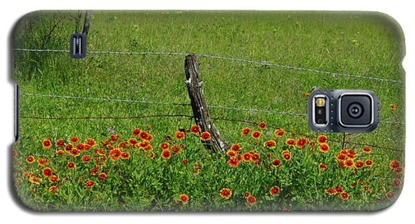 Indian Blanket Fence Galaxy S5 Case by Robyn Stacey
