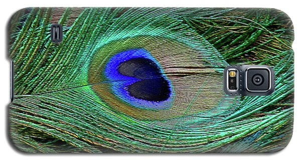 Galaxy S5 Case featuring the photograph Indian Blue Peacock Macro by Blair Wainman