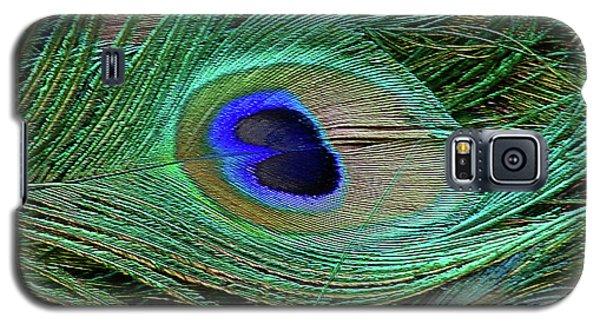 Indian Blue Peacock Macro Galaxy S5 Case by Blair Wainman
