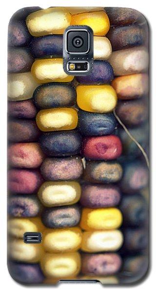 Indian Corn Galaxy S5 Case by Joseph Skompski