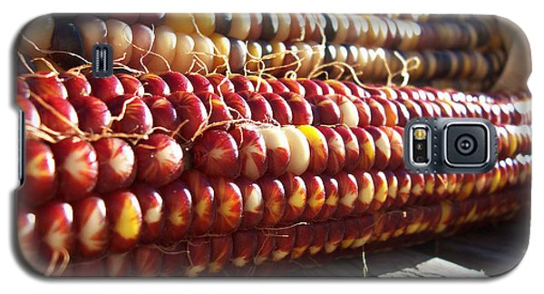 Galaxy S5 Case featuring the photograph Indian Corn On The Cob by Shawna Rowe