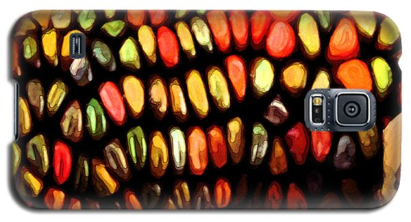 Indian Corn Galaxy S5 Case