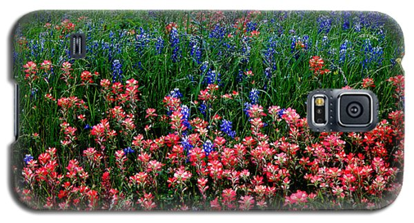 Galaxy S5 Case featuring the photograph Indian Paintbrush #0486 by Barbara Tristan